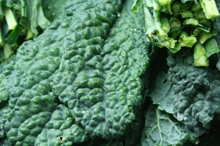 Kale, Sea Salt and a Pinch of Snark: The New Foodie Underground