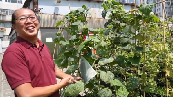 Urban Gardening Around the World: Rooftop Farming in China
