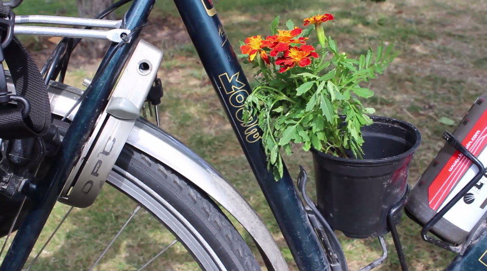 Guerilla Gardening Across Europe… 9 Countries, 5,000 Miles by Bicycle