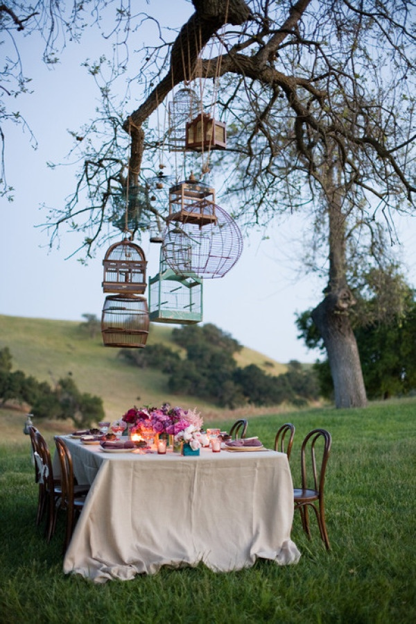 Wholier-Than-Thou: An Outdoor Dinner Party Gone Wrong