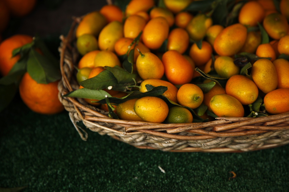 Kumquats on Foodie Underground