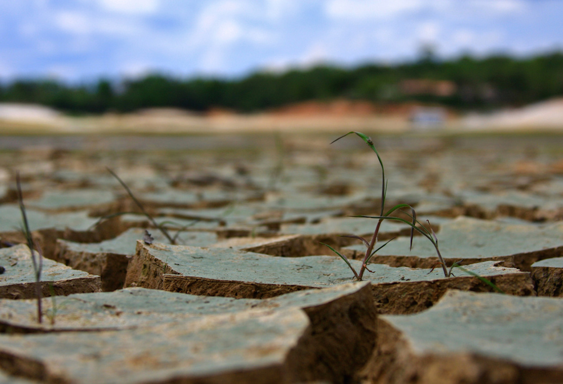 Is Water Footprint Yet Another Thing Ethical Eaters Should Consider?