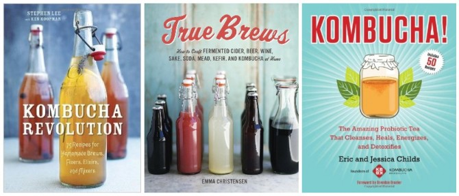 Three Great Kombucha Books on Foodie Underground