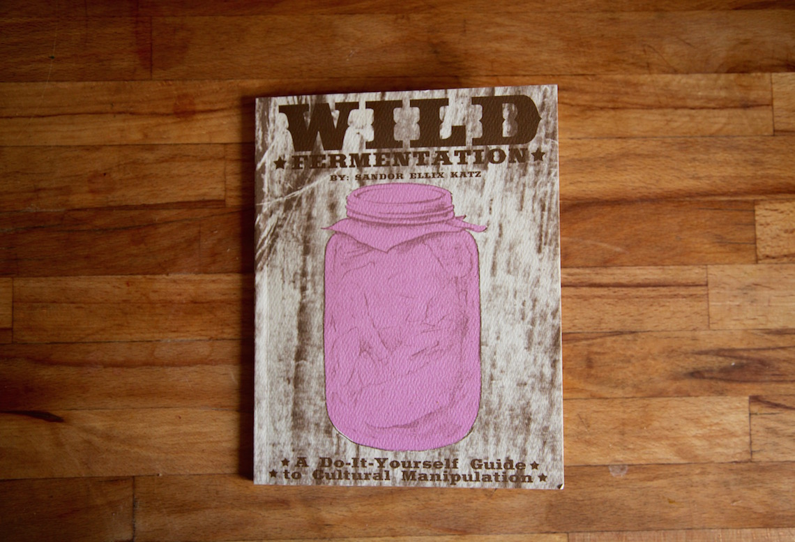 What Does Your Kitchen Need? The Wild Fermentation Zine by Sandor Ellix Katz