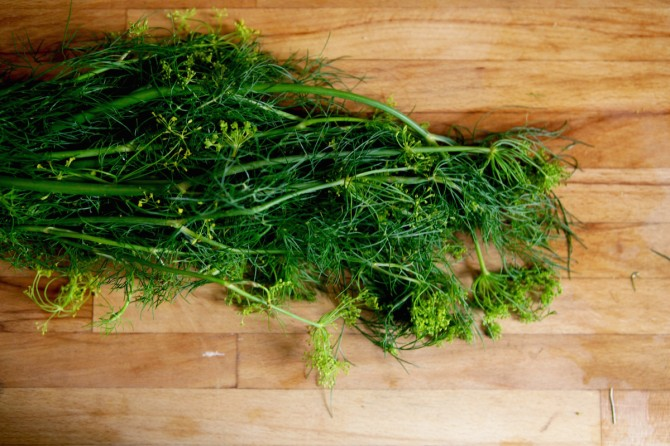 Recipe for Dill Chimichurri on Foodie Underground