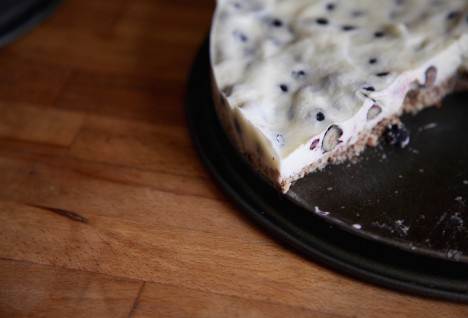 No-Bake Yogurt Blueberry Cake