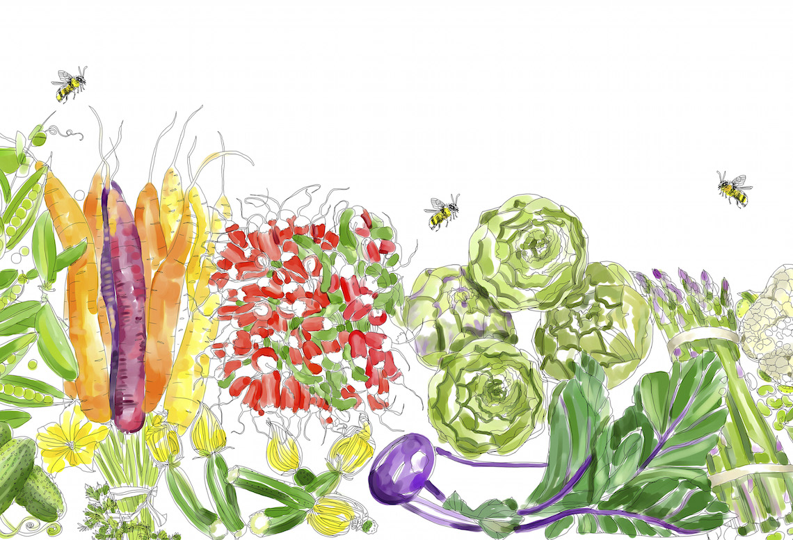Edible Paradise_Spring Coloring Page in Color_Foodie Underground