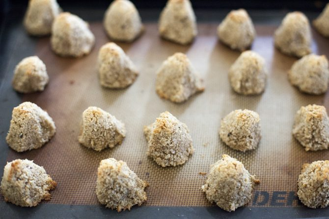 Chocolate Dipped Gingersnap Spice Coconut Peaks